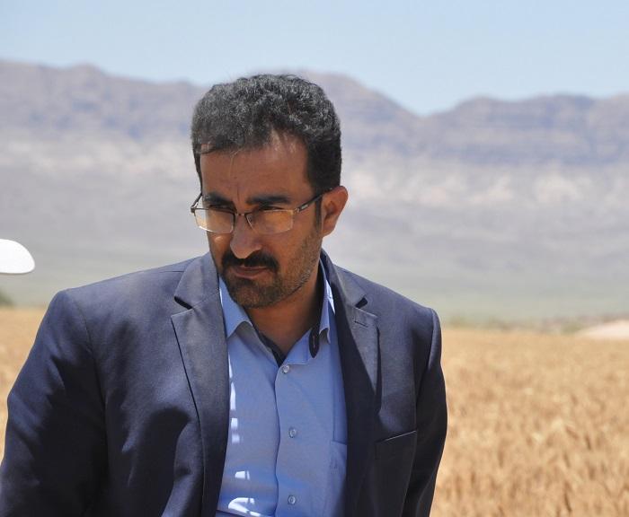 توزیع ۷۰۶تن بذر و پیش بینی برداشت ۵۹ هزار تن جو در خراسان جنوبی